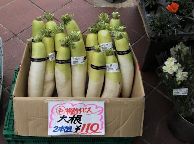大根2本で110円など新鮮な野菜が野菜村で販売されています。私はフードコートで鰻とろろ丼を頂きました。