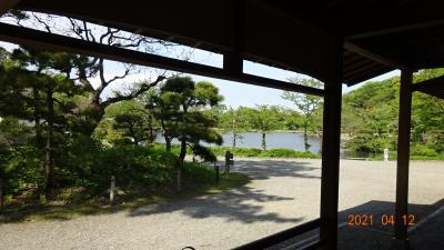 ここでの、一番の御馳走はここに座ってゆっくりと大池の景色を楽しめることです。