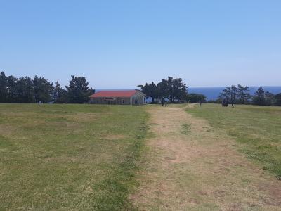 広くて綺麗な芝生
