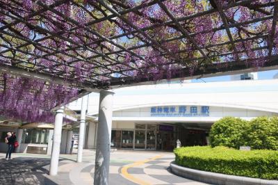 野田ふじの名所(2)野田阪神駅前広場
