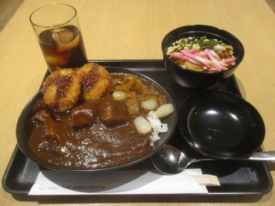 カツカレーと麺類に満足しました