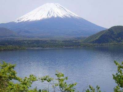 本栖湖越しに雪をかぶった富士山がとても綺麗に見られました