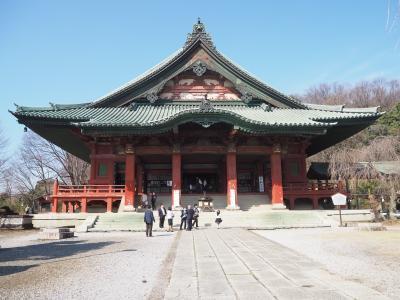 かつて群馬名所1位になった家康ゆかりの寺