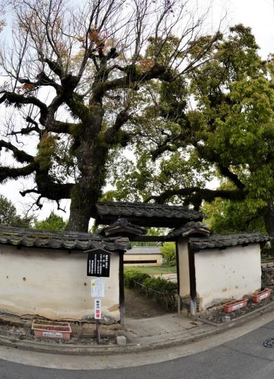 江戸時代の私塾