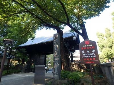 1625年頃建てられた重要文化財に指定されている門