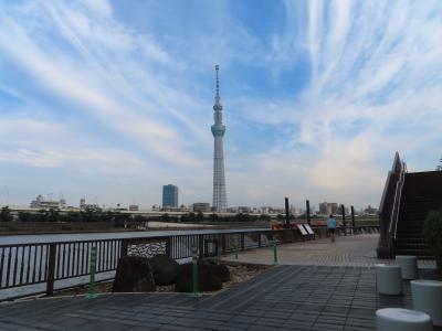 隅田川のビューポイント 散策やジョギングに最適