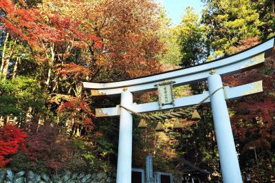 紅葉の宝登山神社