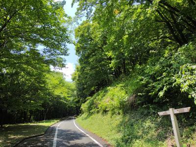 栃木県で一番大きい都市公園