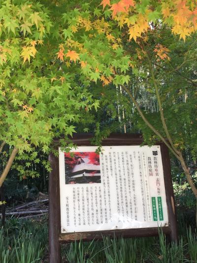 石庭と紅葉の古刹