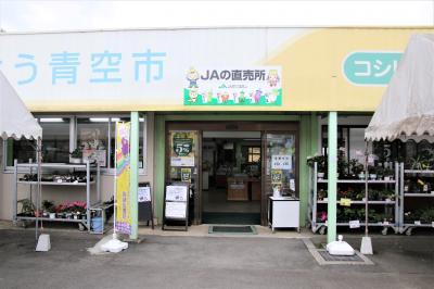 広い店舗で吉備中央町の特産品をはじめ、四季折々の果物、野菜、花きやお米を豊富に販売しています。