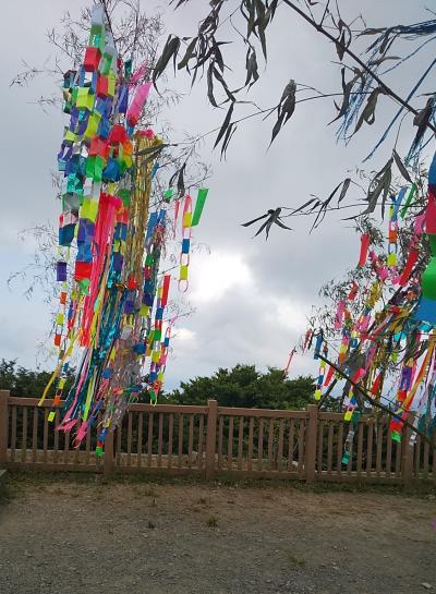 筑波山では人気のイベント