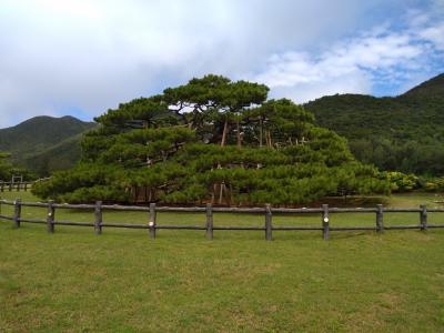 伊平屋島のシンボル