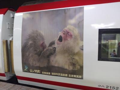猿の写真って。。