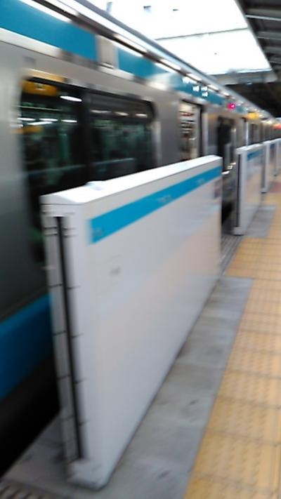 土曜日に、品川駅と蒲田駅間を往復で利用しました