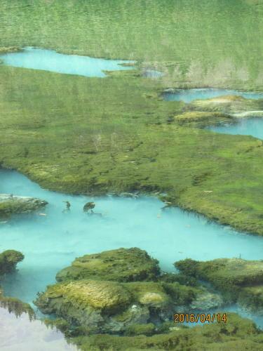 エメラルドグリーンのきれいな湖: 五花海 クチコミ一覧【フォートラベル】
