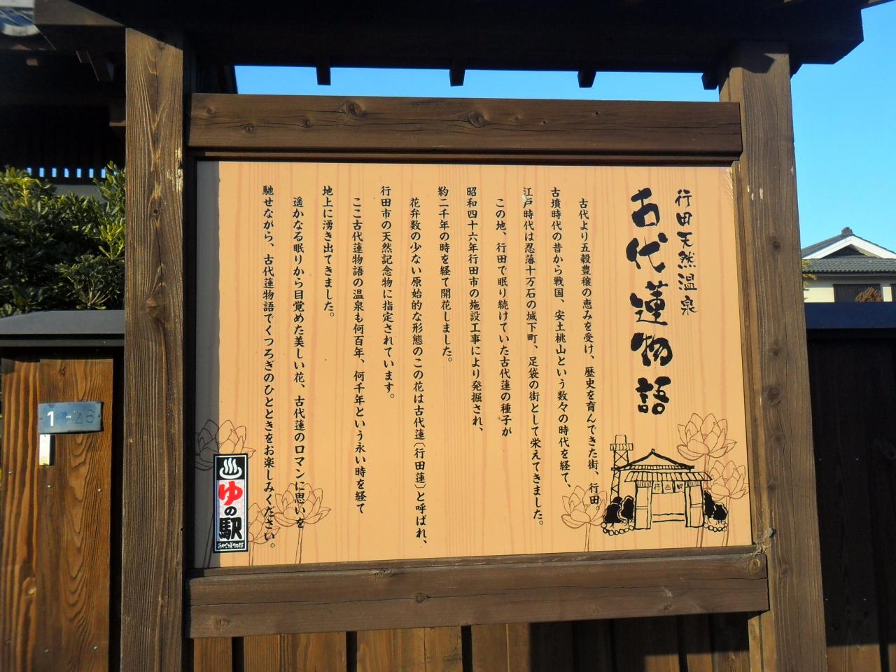 【埼玉】行田天然温泉古代蓮物語で温泉も食事も …