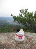 alpine_moguさん 写真