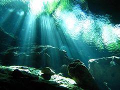 カンクンから行ける絶景スポット!神秘の泉「セノーテ」とは