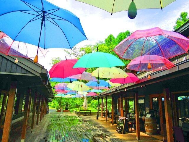 この時期に行きたい軽井沢のおすすめスポット16選!自然、買い物、温泉を満喫♪