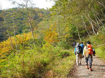 関東日帰りハイキング!登山初心者~中級・上級者までおすすめの山17選