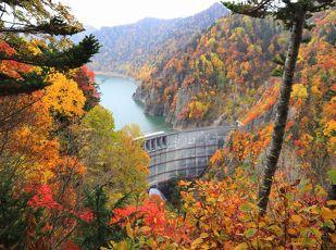 豊平峡電気バス乗車券付き 紅葉と定山渓の名湯で秋満喫 写真