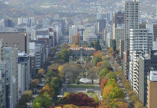 アパホテル<札幌大通公園> 写真