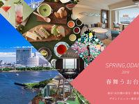 SPRING,ODAIBA 2019 春舞うお台場 東京