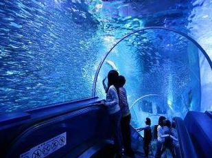 【公式サイトがお得!】今なら3大特典付きの横浜・八景島プラン 写真