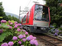 【祝☆運転再開♪】箱根登山鉄道運転再開記念♪夕食・朝食付