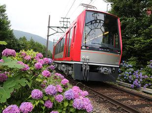 【祝☆運転再開♪】箱根登山鉄道運転再開記念♪夕食・朝食付 写真
