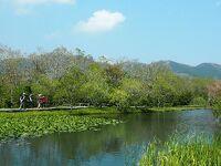 【入園券付☆箱根湿生花園】季節を彩るバイキング2食付き!