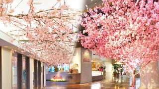 サンルートプラザ東京 (2019年10月1日より「東京ベイ舞浜ホテル ファーストリゾート」へリブランド)