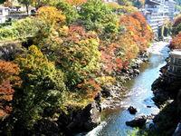 秋の風景といえば、やっぱり紅葉ですね♪