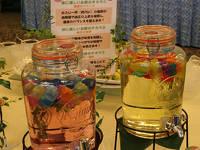 <<セレクトホテルズグループ参画記念>>10室限定☆朝食付き