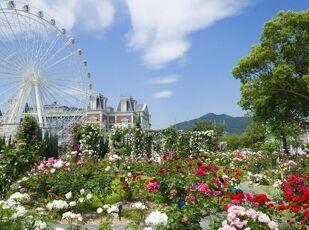 【花満開の季節】フラワーフェスティバルへようこそプラン♪ 写真