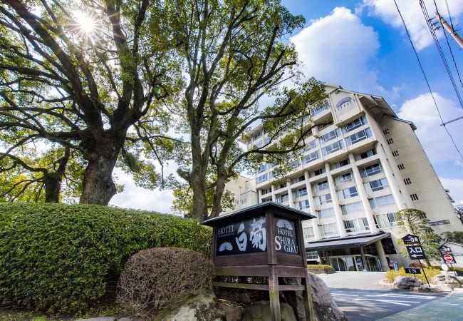 べっぷの宿 ホテル白菊 写真