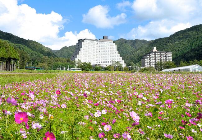 ホテルリステル猪苗代 ウイングタワー 写真