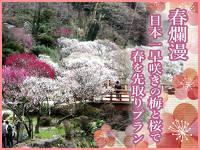 海側お任せ1ドリンク付★早咲き梅と桜で春先取り♪海の幸を満喫
