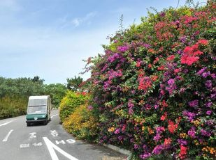 【沖縄県民限定】アップグレード・24時間ステイなど7大特典付 写真
