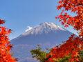 [お得情報]富士マリオットホテル山中湖