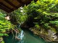リブマックスリゾート天城湯ヶ島 写真