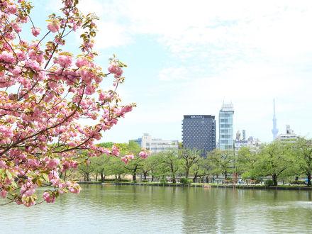アパホテル<京成上野駅前> 写真