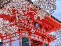 京都が息づく宿「ケンプトン~CAMPTON」