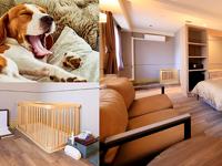 4室限定!愛犬と一緒に泊まれる ドッグフレンドリールーム