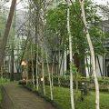 写真:高原のホテル ラパン