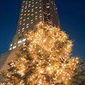 写真:セルリアンタワー東急ホテル