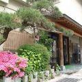 写真:清風かおる湯宿 林屋旅館