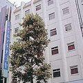 写真:シティホテル名古屋