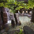 写真:松江しんじ湖温泉 なにわ一水