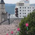 写真:津山セントラルホテルタウンハウス(BBHホテルグループ)